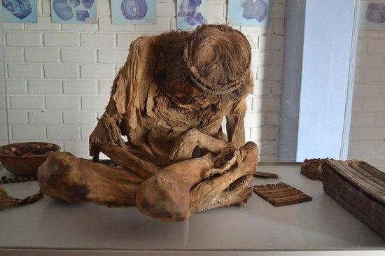 Cementerio Chauchilla : Skeleton in the museum