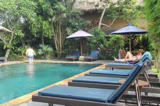 Tegal Sari: Swimming pool
