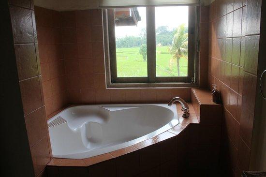 Tegal Sari: My room bathtub