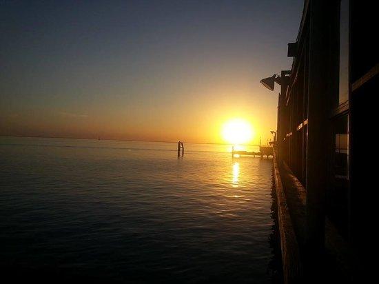 Pier 19: Peir 19 view 2014