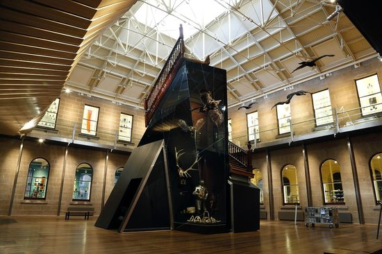 Tasmanian Museum and Art Gallery: TMAG's spectacular Central Gallery