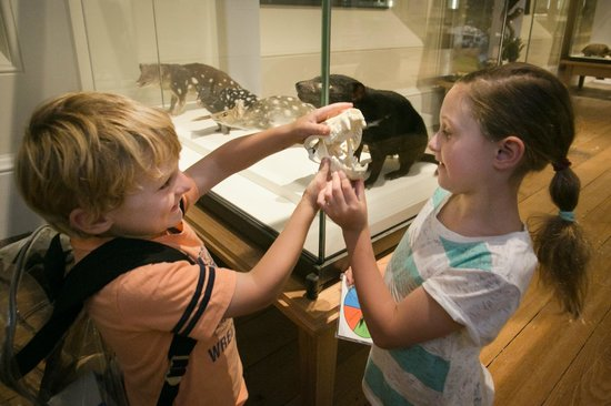 Tasmanian Museum and Art Gallery: Young visitors explore a Discovery Backpack