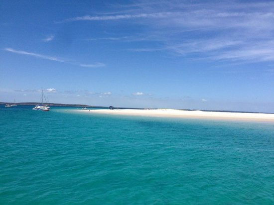 Whalesong Cruises: View of the beach