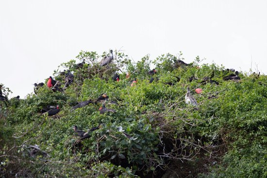 Parque Nacional Los Haitises: Los Haitises National Park