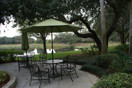 Holiday Inn Express Tampa-Brandon: La terrace