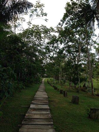 MarinAmazonica: Entrada Hermosa