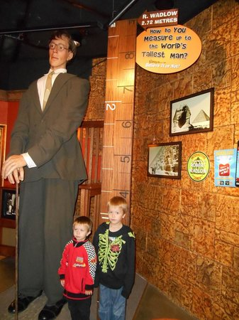 Ripley's Believe It Or Not! Surfers Paradise: My boys don't quite measure up! :) World's tallest man replica