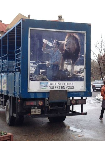 Forest Restaurant : a water truck parked outside - this is as close as a lion will get to the front door