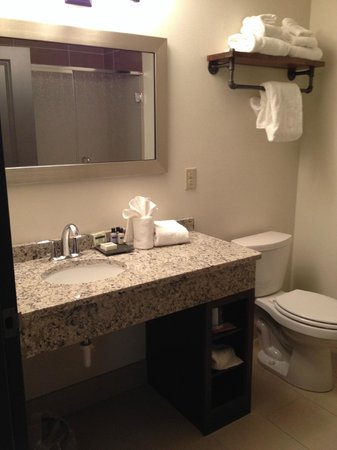 The Brewhouse Inn & Suites: clean and spacious bathroom with shower