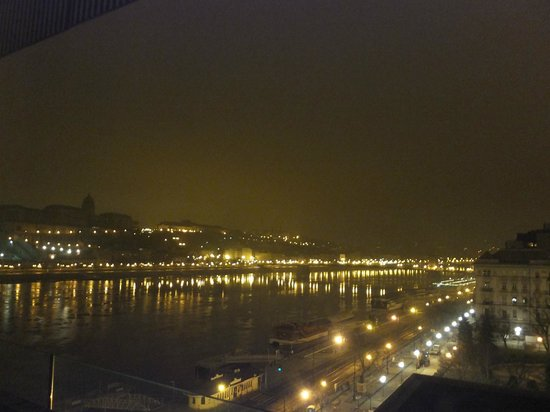 Budapest Marriott Hotel: 王宮も見えました