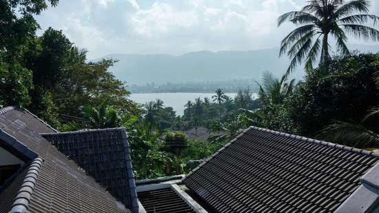 Chaweng Lakeview Residence : View from the balcony of the room.