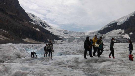 Banff Guide Service: 氷河を歩く