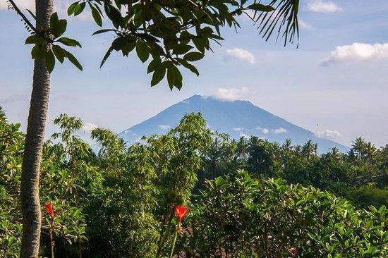 Taman Indrakila: Volcano view from property
