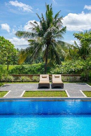 Taman Indrakila: Pool and view