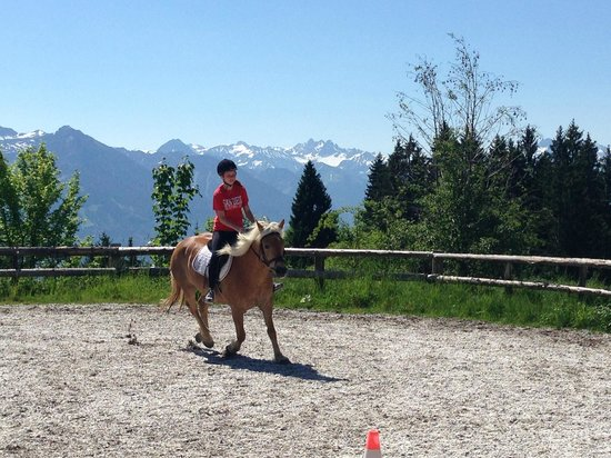 Familotel Allgauer Berghof: View of riding arena - beautiful haflinger horses!