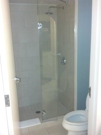 Hyatt Place Lake Mary/Orlando-North: Nice shower with glass door