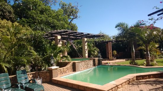 Stephans Guesthouse: Pool and braai area