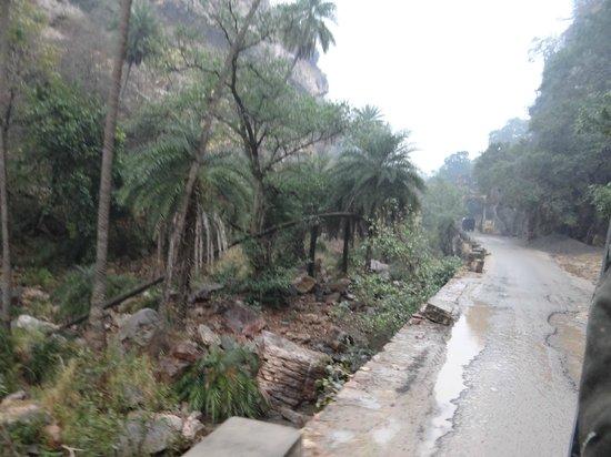 Ranthambore National Park: the battered road