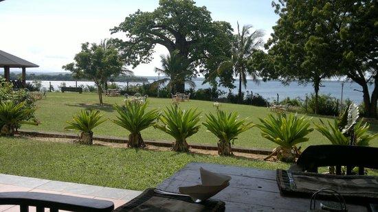 Mkonge Hotel: View