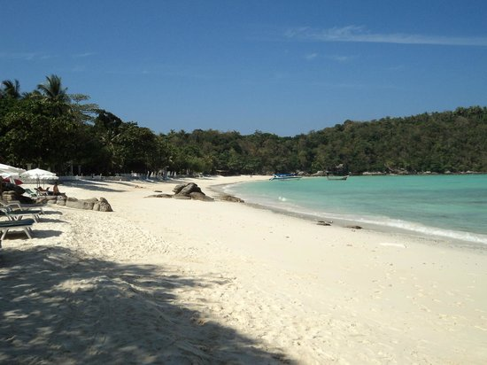 Coral Seekers: Racha Beach, where the magic happened