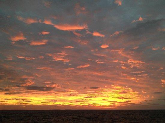 Eye to Eye Marine Encounters: Sunset