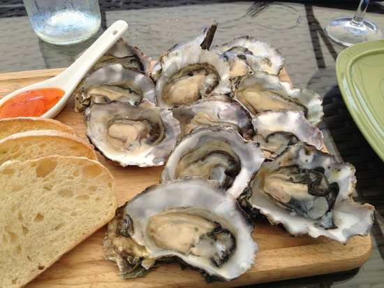 Peacock Sky Vineyard: Beautiful Te Matuku oysters