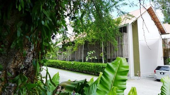 Belum Rainforest Resort: PHASE 1 - EXTERIOR