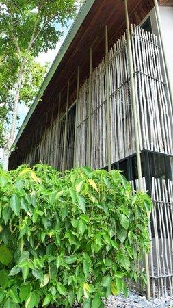 Belum Rainforest Resort: SUPERIOR, DELUXE & EXECUTIVE DELUXE ROOMS - EXTERIOR