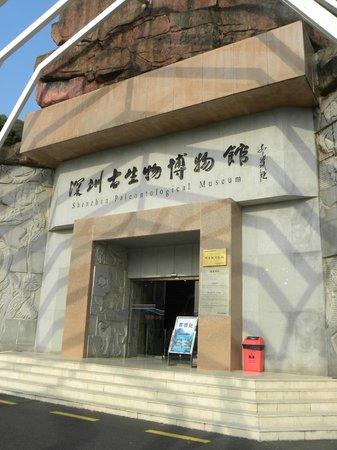 深圳古生物博物馆