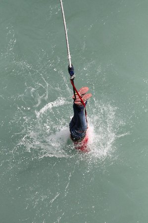 AJ Hackett Bungy New Zealand: Bungy with a dunk