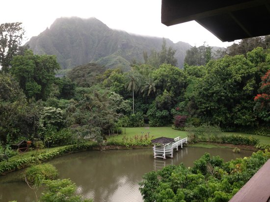 Haleiwa Joe's: Views of the restaurant grounds from table