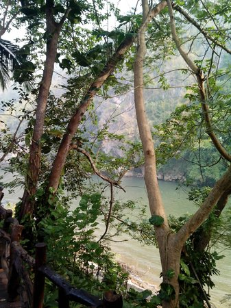 River Kwai Resotel : la vegetazione dentro l'hotel