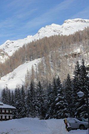 Residence Oberteil: Panorama