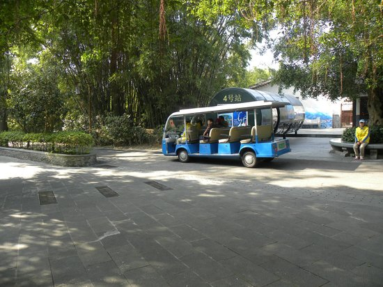 OCT East Shenzhen: Minibus to take you around the park