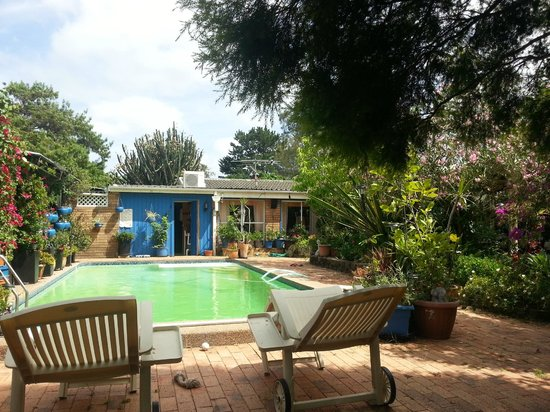 Pindari House : Pool area