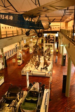 Queen Victoria Museum & Art Gallery: View from upstairs