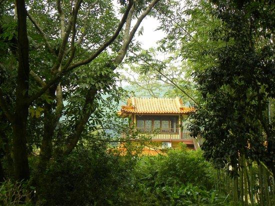 Xianhu Botanical Garden: near the palm garden