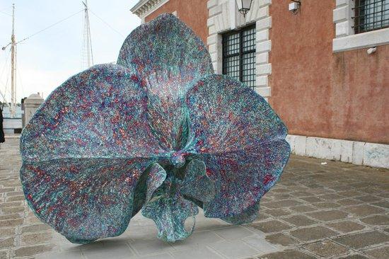 San Giorgio Maggiore: орхидея