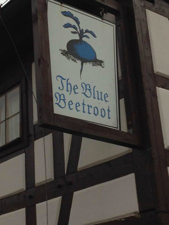 The Blue Beetroot Hotel : A little slice of heaven
