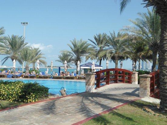 Hilton Abu Dhabi: pool area