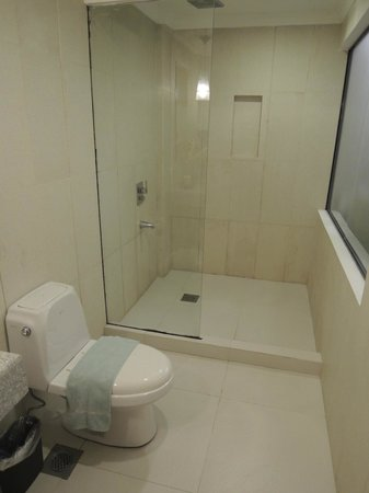 Erus Suites Hotel: Shower + Washroom