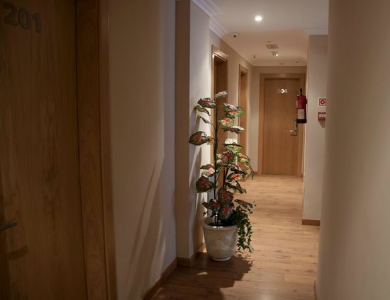 Hotel Casa Pipo: Instalaciones