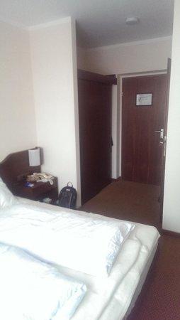 Hotel Andreas Hofer: Standard double room