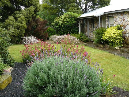 Seaview Farm: Another garden.