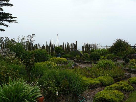 Seaview Farm: The herb garden.