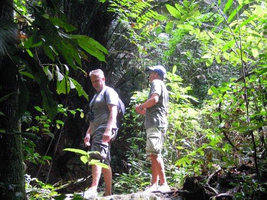Phuket Baan Chang B&B: jungletocht