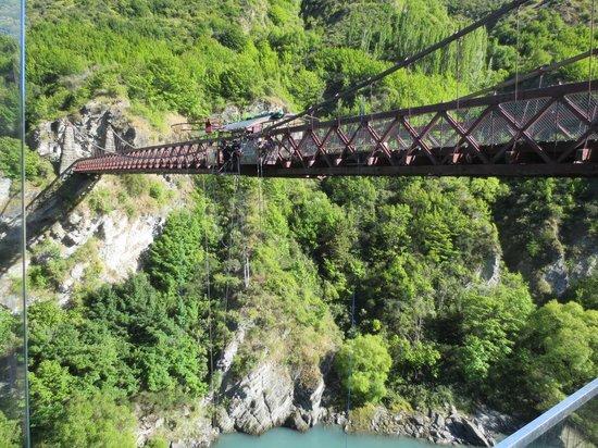 AJ Hackett Bungy New Zealand : Kuwarau Bridge Bungy