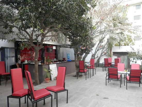 terrasse couverte et ferm e photo de cafe des arts katmandou tripadvisor. Black Bedroom Furniture Sets. Home Design Ideas