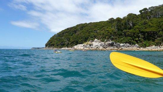 Kaiteriteri Kayaks : Beautiful day in Abel Tasman