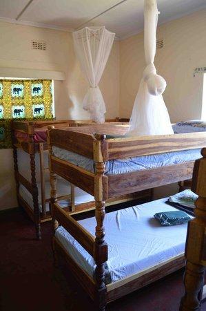 Zinga Backpackers: Dorm Beds
